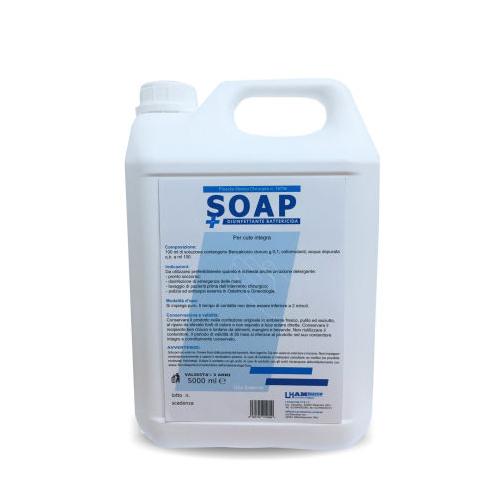 LH SOAP – SAPONE LIQUIDO DISINFETTANTE INODORE PER IL LAVAGGIO DELLE MANI – TANICA 5 LT.